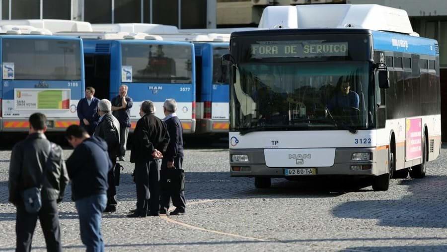 STCP, Porto, Francos, autocarros,