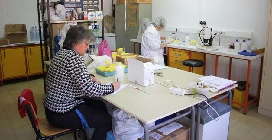 Margarida Machado e Margarida Cristo, investigadoras da Universidade do Algarve, foram coautoras da descoberta, em 2010 com um cientista alemão