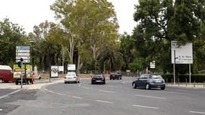 Assembleia Municipal de Lisboa recomenda videovigilância no Campo Grande