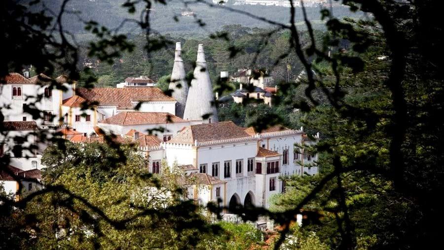 O Parque e o Palácio da Pena foram os mais visitados em 2014