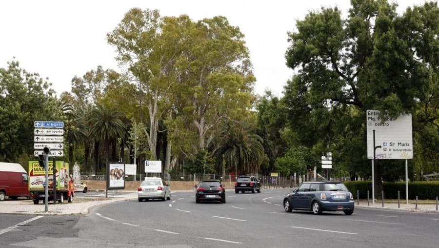 O atropelamento ocorreu na sexta-feira à tarde, no Campo Grande, em Lisboa
