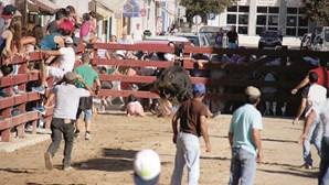 Menina escapa a touro bravo