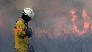 139 operacionais combatem incêndio em Rio Maior