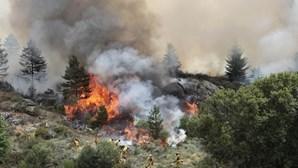 Mais de 500 operacionais combateram 28 fogos hoje