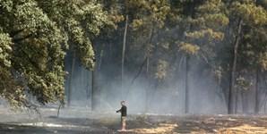 População, munida de mangueiras, ajudou no trabalho de extinção do incêndio