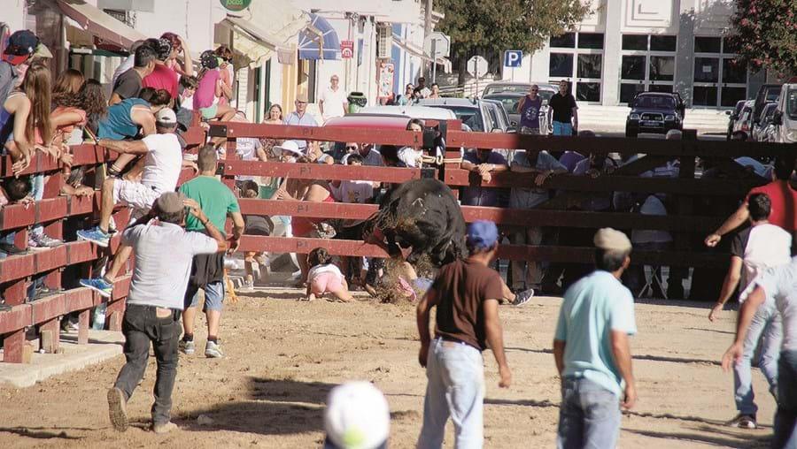 Momento em que a criança cai e o pai está debaixo do touro