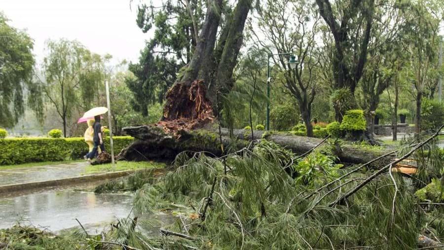 O Tufão Goni deixou um grande rasto de destruição nas Filipinas