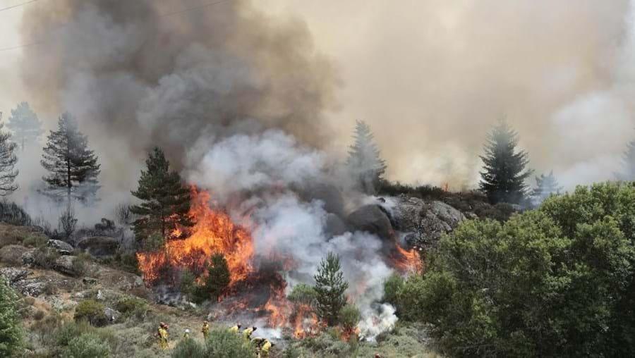 Os dias 9 e 10 de agostoforam os dias com mais incêndios