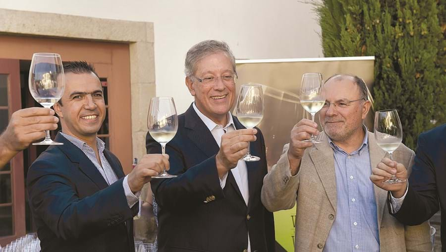 Apresentação da Festa das Vindimas decorreu esta terça-feira no Solar do Vinho do Dão, em Viseu