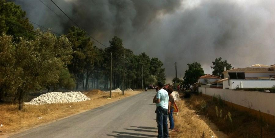 O leitor do CM, Jorge Tereso, captou imagens do incêndio florestal que ameaçou habitações em Casas de Azeitão