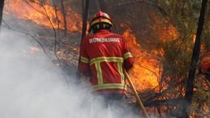 Polícia Judiciária deteve suspeito de atear fogos na Trofa