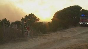 Bombeiros combatem chamas na Charneca da Caparica