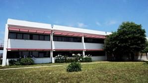 Politécnico de Viana do Castelo disponível para refugiados