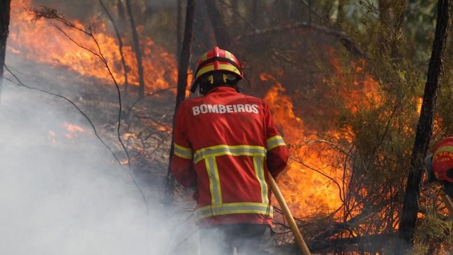 Homem é suspeito de ter iniciado 5 focos de incêndio