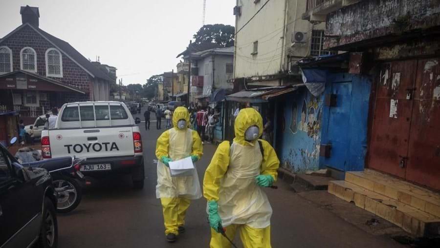 O vírus surgiu em dezembro de 2013 na Guiné