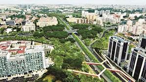 Obras na Segunda Circular em Lisboa provocam corte de circulação em Benfica
