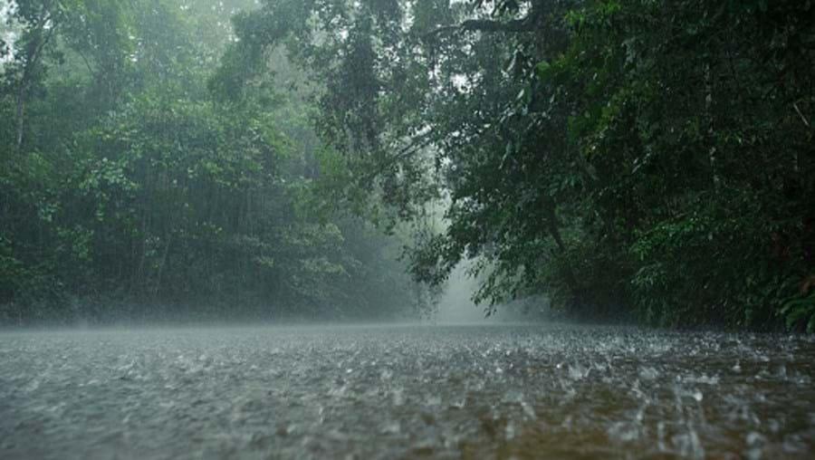Chuva, frio, previsões meteorológicas, meteorologia, IPMA, Instituto Português do Mar e da Atmosfera