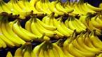 Mulher come banana infestada com ovos de aranha