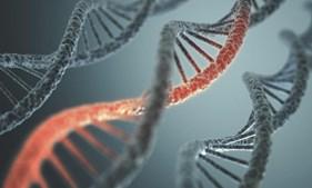 Sequenciação do DNA pode ajudar a detetar a propensão para certas doenças