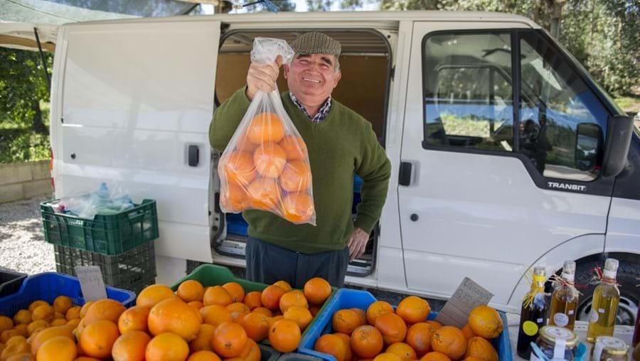 Acácio Vieira é um dos produtores de laranja da aldeia de Pafarrão