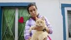 Mãe admite erro em maus-tratos a gata