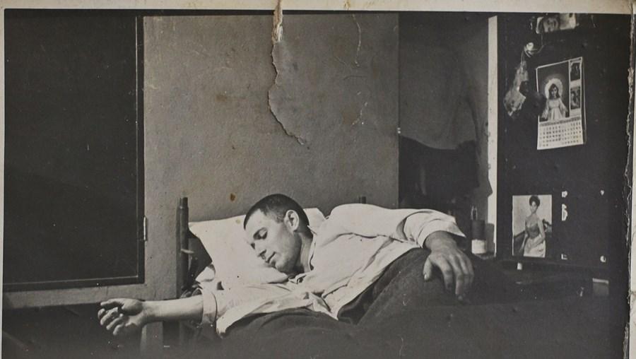 A descansar, depois de fugir do cativeiro