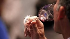Cerca de mil vinhos de Portugal e Espanha a concurso no certame VinDouro/VinDuero