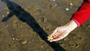 Apanha da amêijoa-japonesa está proibida mas atrai centenas de mariscadores no estuário do Tejo