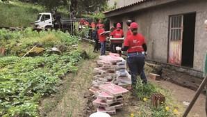 Voluntários ajudam 5 famílias carenciadas