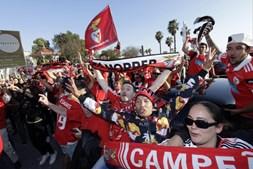 Adeptos do Benfica fazem a festa do 35º campeonato nacional em Faro