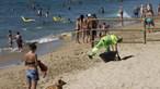 Barcelona inaugura praia para cães
