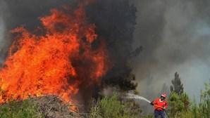 Incêndios em Mação, Sertã e Castelo Branco mobilizam 1400 bombeiros