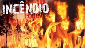 Cem bombeiros combatem fogo em Castelo Branco