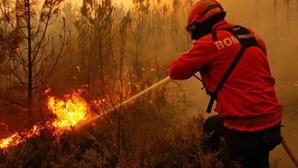 PJ detém suspeito de incêndio florestal em Viseu