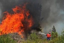 Em risco 'Muito Elevado' de incêndio estão vários concelhos de Faro, Setúbal, Beja, Santarém, Castelo Branco, Portalegre, Guarda e Viseu
