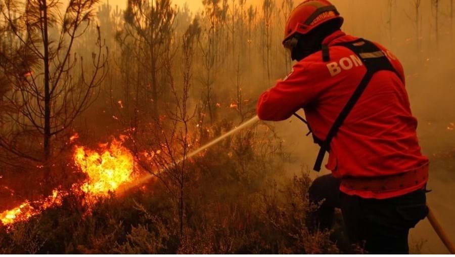 Incêndios, Portugal, Floresta, Incêndio Florestal, Bombeiros