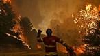 Sapador que combatia fogo em S. Pedro do Sul no hospital