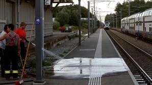 Conheça o local do ataque a comboio suíço