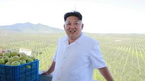 Duplo de líder norte-coreano causa sensação no Brasil