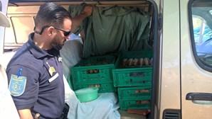 Polícia Marítima destrói 210 bolas de Berlim