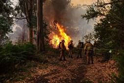 Fogo na Calheta era a situação mais preocupante ao início da noite de sexta-feira