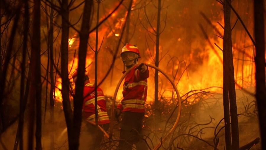 Incêndio é combatido por mais de 600 bombeiros
