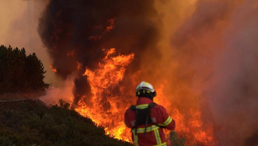 Bombeiro combatia chamas em zona de mato na Mesquitela