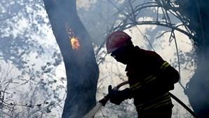Vento dificulta combate às chamas na Madeira