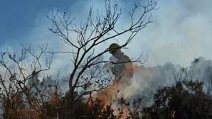 Seis concelhos em risco 'Muito Elevado' de incêndio