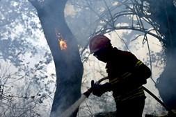 Ventos fortes estão a dificultar muito o combate às chamas