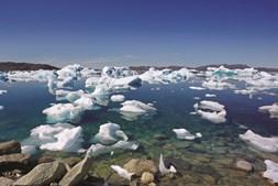 Os icebergues partem-se desde o manto gelado e percorrem os fiordes