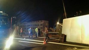 Camião despistou-se às 3h30 da madrugada desta quarta-feira