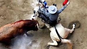 TC espanhol anula decisão da Catalunha de proibir touradas