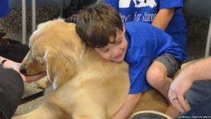Menino autista faz amizade com cão terapeuta